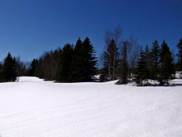 Winterland Stock 2 by philippeL-stock