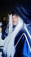 Dragon's Crown Wizard Cosplay 2 by Edaine