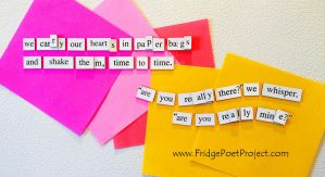 The Daily Magnet #247 by FridgePoetProject