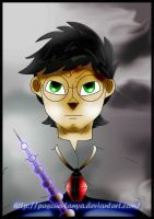 Harry Potter- The Master of Death by Pascua-Tanya