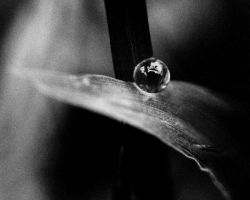 BW Ball Of Water by SilentDistractions