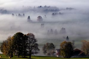Bavarian morning V by mutrus