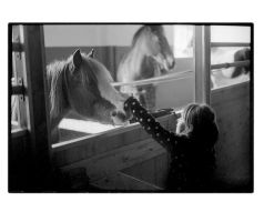 my niece and a horse by britegreenfish