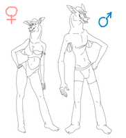 Female and Male Akrennian lineart - free lineart! by StanHoneyThief