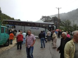 Albania Buses... by CityBloop