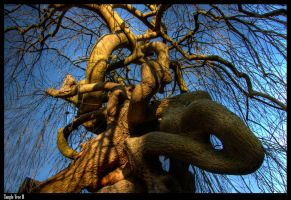 Tangle Tree II by Megglles