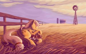 Prairie Lullaby by Ponytron5000