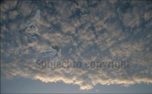 Eyes in the clouds by Tangent101