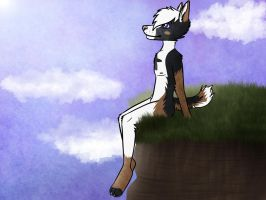 .:on a cliff:. by Mustang-Heart