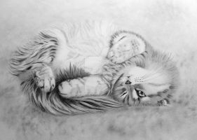 fluffball by graphiteimage