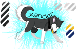 Xander Ref. Sheet by muffinluver0333