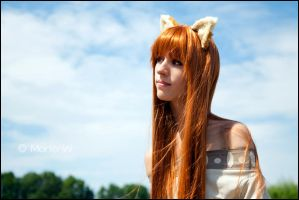 Spice and Wolf: Contemplating by MortenW