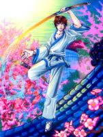 Ryu Feature by manic-goose