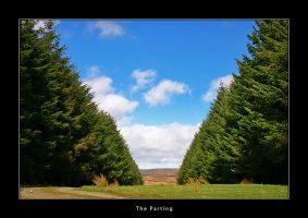 The Parting by honz12