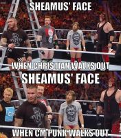 Sheamus Prefers CM Punk by XxInsaneLunaticxX