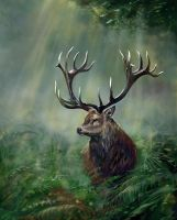 The Buck stop here PS by nosoart