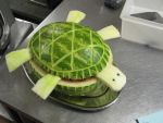 Watermelon Turtle by ShadeDK