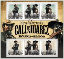 Call of Juarez 2 icons by evaldasmix