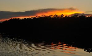 Sunset ripples 1 - Amazon by wildplaces