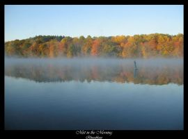 Mist in the Morning by FicktionPhotography