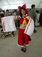 Hatsume Fair '13: Reimu by NaturesRose