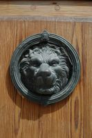 Doorshield Lion by BlokkStox