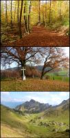 Fall in Switzerland by Cadaska