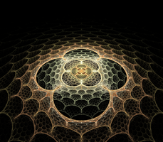 Honeycomb Web by hourglassthorne
