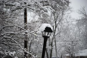 Snow covered street light by minami