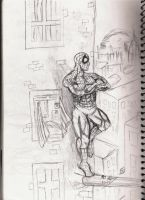 Spiderman: Debut of a Day by freaky06