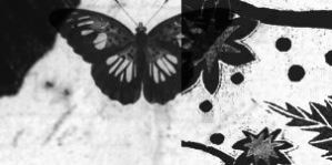 Photoshop Brushes, Butterfly2 by re-source