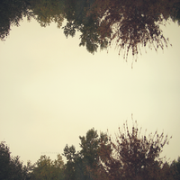upside down. by awfultosee
