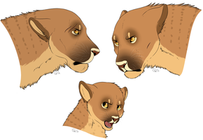 soturi heads by CitruShark