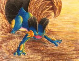 swampert uses muddy water by CHOJAEYOON