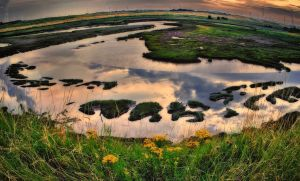 estuary boosted colours by steveearl