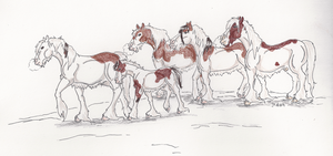 Ash's Siberian Mustang Herd by AgentDarkhorse