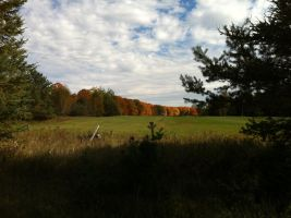 Fall Colors 2 by dcrods