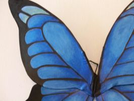 Blue Beauty Adult wings 3 by KimsButterflyGarden