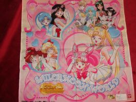 Sailor Moon World cloth 2 by Mewmew34