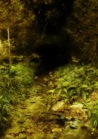 A Forest Pool_ 1 by GoblinStock