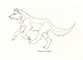 WOLF by Rin-Claymore