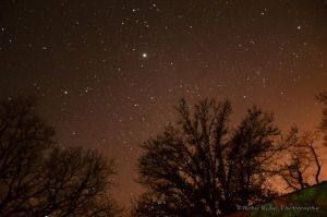 First Stars 2014 3 by RobyRidge