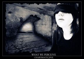 What We Perceive by CharismaticJinx