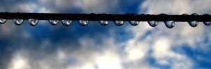 Raindrops on the wire by LauraLeeIlly