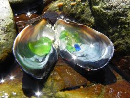 Muscle Shell with Sea Glass 2 by Samela7