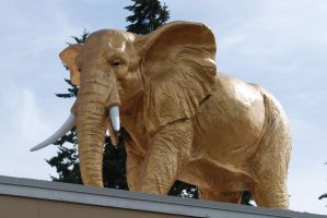 Gold Elephant Statue Stock 2 by chamberstock