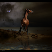 Dont forget me by AgnethaArt