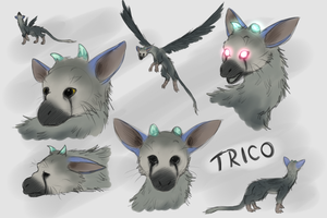 Trico Sketches by IcelectricSpyro