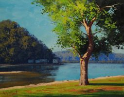 Patonga creek by artsaus