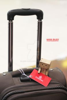 Traveling by miss-busy